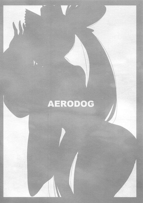 愛犬・牛若丸【AERODOG(inu)】(Fate/Grand Order)25枚目